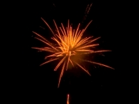 Red Wire 48mm professional fireworks cakebox with golden kamuro effects, available at Xena Vuurwerk BV - Holland