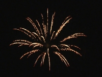 Shells 2,5 inch - Brocade crown, available at Xena Vuurwerk BV form Holland. Distributor of Professional Fireworks in Europe