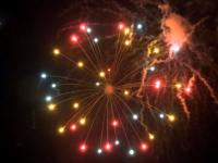 Color dahlia - 5 inch RedWire professional fireworks shell. Available at Xena Vuurwerk, professional fireworks supplier from Holland