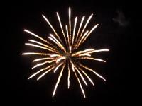 5 inch shell silver palm to white strobe. Professional RedWire fireworks, distributed by Xena Vuurwerk BV - Holland