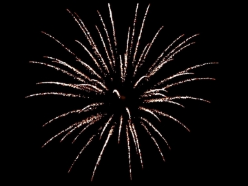 3 inch professional fireworks shell of Red Wire with Brocade crown effect. Available at Xena Vuurwerk from Holland