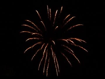 2,5 inch shell brocade crown. Professional RedWire fireworks, distributed by Xena Vuurwerk BV - Holland