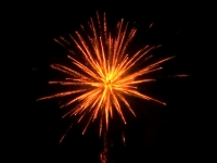 Order the Heavy Gold professional fireworks cakebox at Xena Vuurwerk BV, wholesale and supplier of professional fireworks