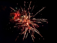 Professional fireworks 100 shots cakebox of the Red Wire assortyment, distributed by Xena vuurwerk in The Netherlands