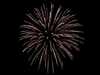 5 inch shell Brocade crown - Red Wire professional fireworks. Supplied and distributed by Xena Vuurwerk BV from Holland