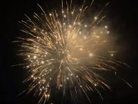 RedWire 49 shots professional fireworks cake with whistling tails to brocade crown w/crackling. vailable at Xena Vuurwerk - The Netherlands