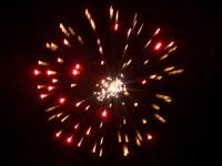 5 inch shell red to brocade crown with crackling. Professional RedWire fireworks, distributed by Xena Vuurwerk BV - Holland