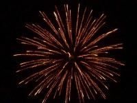 6 inch shell crackling brocade crown. Professional RedWire fireworks, distributed by Xena Vuurwerk BV - Holland