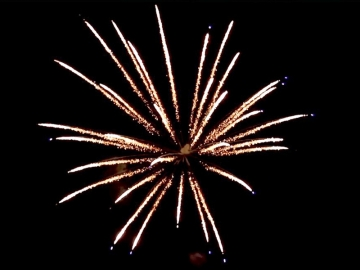 """Red Wire professional fireworks 4 inch shell : blue iron tree. Available in assorted 4"""" shells at Xena Vuurwerk"""