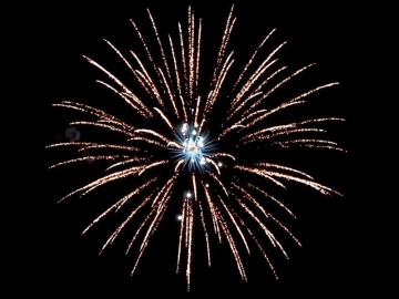 """Red Wire professional fireworks 4 inch shell : brocade crown w/white strobe pistil. Available in assorted 4"""" shells at Xena Vuurwerk"""