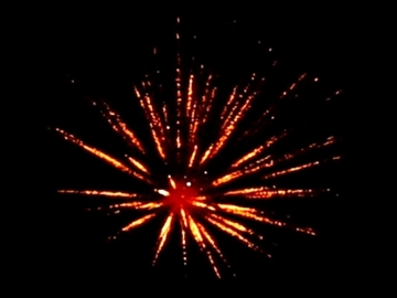 """Red Wire professional fireworks 4 inch shell : Gold willow w/crackling pistil. Available in assorted 4"""" shells at Xena Vuurwerk"""